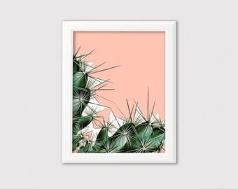Cactus Print // Cacti Wall Decor // Cactus Art Print // Cactus Boho Chic Wall Art // Botanical Print Home Decor // Modern Wall Art