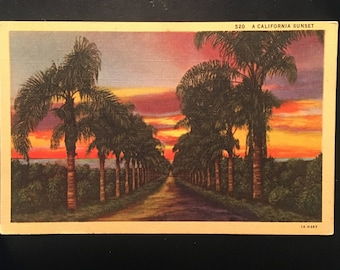 Vintage Postcard- California Sunset