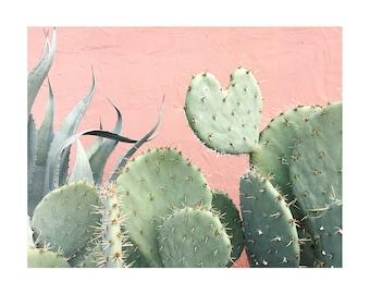Cactus Heart on Pink  // Cactus Art // Cactus Desert Photography // Nursery Art // Southwest Home Decor // Plant Photograph // Cacti Art