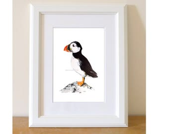 Puffin ... Print of my Original Watercolour Painting A4 size by Nancy Antoni watercolor