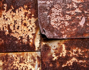 Four bronze panels, rust, peeling paint, brown, lines, abstract, photograph, earth tones,, photograph