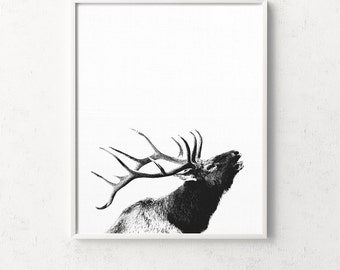 Deer head, deer print, deer antlers, antlers, deer wall art, deer poster, deer art, tete de cerf, nordic art, black and white scandinavian