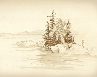 Coastal Maine drawing postcard