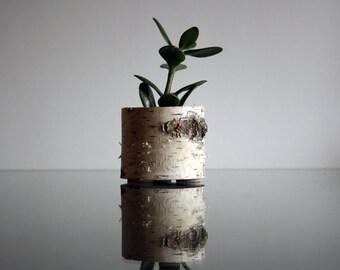 Birch Wood Planter, Succulent planter,Natural Wood, Small Planter, Office Planter, Small Cactus Pot, Cactus planter