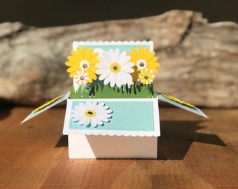 daisy card in a box, pop up cards, flower card, 3D cards, daisy pop up card, pop up card, happy birthday, thinking of you cards
