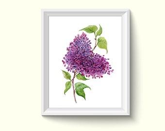 Purple Lilac Flower Watercolour Painting Drawing Art Print N122