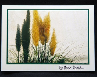 "Photo Greeting Card - Pampas Grass - Folded 5""x7"""