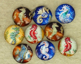 Set of 9 cabochons 16mm round glass, fish, seahorse, multicolor