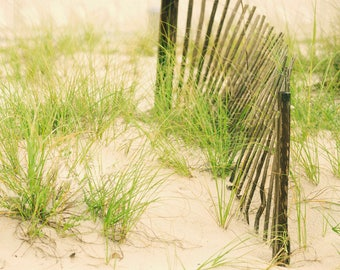 Sand dunes with fence on beach digital background/digital backdrop