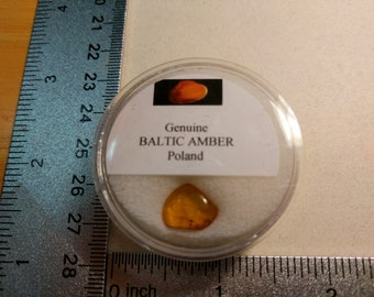 Genuine Baltic Amber from Poland