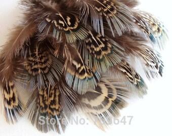 Green Almond Pheasant Feathers