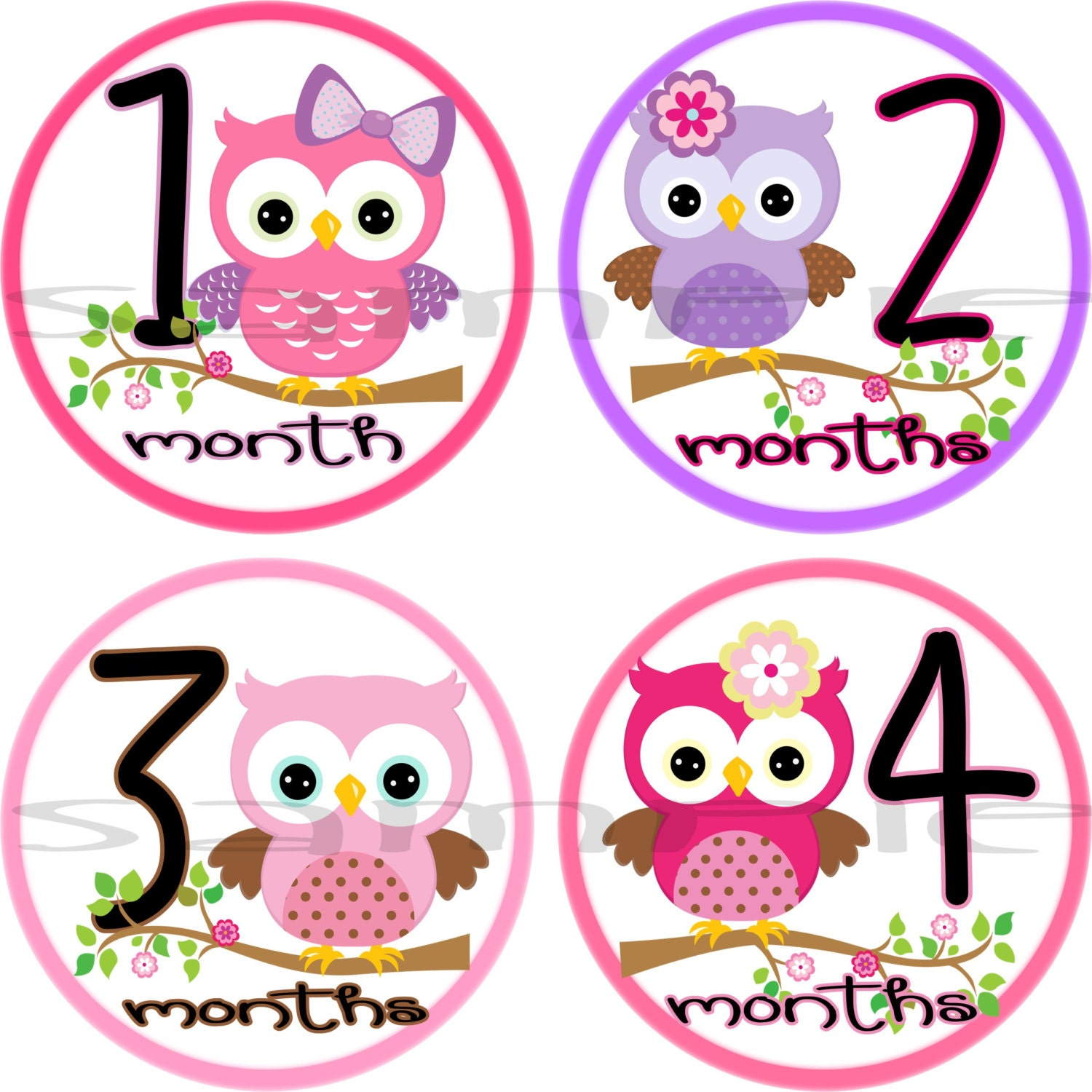 Girl Owl Baby Monthly stickers set Precut Month to Month Baby
