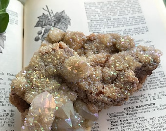 Pastel rainbow aura spirit Quartz cluster faery cactus