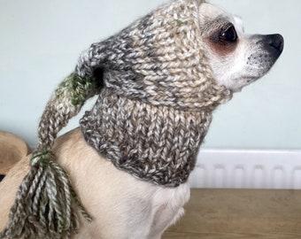 Chihuahua tassel hat