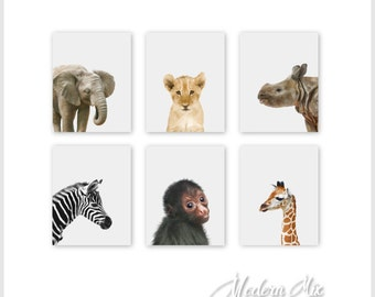 Safari Nursery Art Prints Set of 6 Nursery wall art Baby Animal Prints