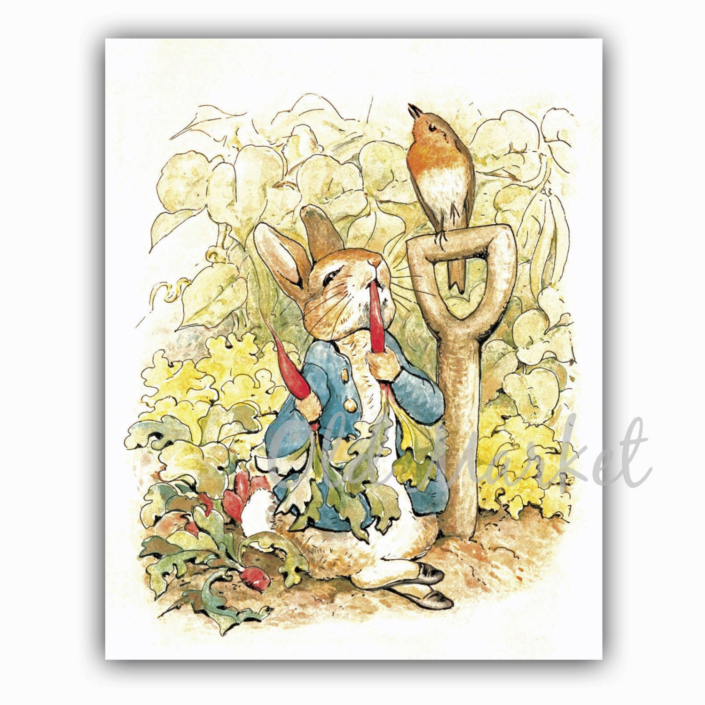 Peter Rabbit 1 - Beatrix Potter Illustration - Printable Digital ...