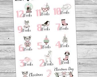 Christmas Countdown Planner stickers - pastel pink + mint - Erin Condren - Plum Paper - Happy PLanner - Kikki K - TN - Diary
