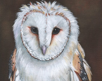 Barn Owl Painting - print of owl painting 5 by 7 print - BO4215, bird art, wall art, home decor