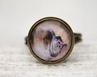 Dog Ring, Bulldog. British Bulldog, Animal Ring, Adjustable Ring, Statement Ring, Dog Jewellery, Dog Lovers, Dog, Animal Jewellery
