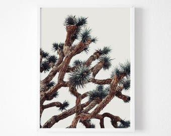 Joshua Tree Print, Desert Print, Desert Printable, Desert wall art, Desert decor, Joshua tree decor, Joshua tree Photography, Wall art
