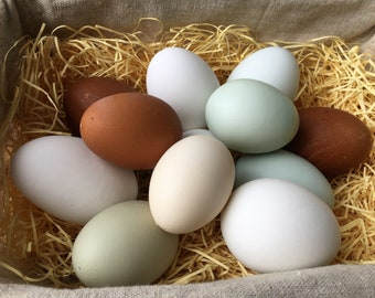 SALE, SECONDS - Set Number 3, One Dozen Blown Eggs, Practice Eggs, Display, Eggs for Craft, Mosaic