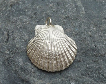 Scallop pendant / necklace in sterling silver...