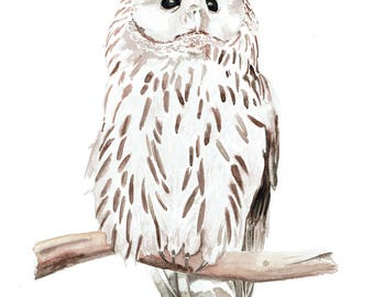 Ural Owl Watercolor Archival Art Print, Original Owl Art, Animal Art, Home decor, nursery room art, living room decor, minimalist home art