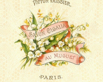Antique, French, Paper, Box, Soap, Label, Cake of Soap, Lily of the Valley, Muguet des Bois, Cream, Pink, Vintage, Graphic, Floral, Flowers