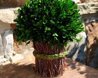 Large Boxwood bouquet~preserved boxwood topiary~boxwood centerpiece~boxwood~wedding centerpiece~preserved boxwood~boxwood ball~rustic decor