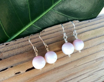 Conch Shell Earrings - Classic Rounds - Clarity by the Ocean