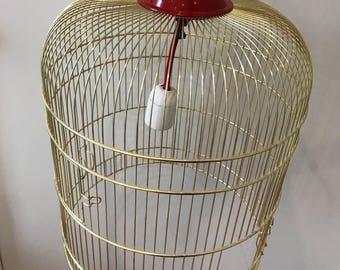 Open open cage birds.