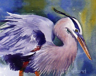Great Blue Heron Print 8x10 Watercolor Bird Wall Art by Janet Zeh