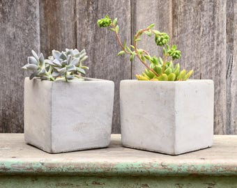 Modern Simplistic Grey Concrete Cube Planter