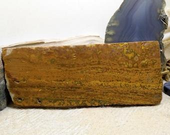 Slab Cab Lapidary Slabs Indonesian Orbicular Jasper Agate #02