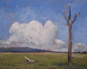 Meadow Below Baldy - Philmont - New Mexico - Limited Edition Fine Art Landscape Print