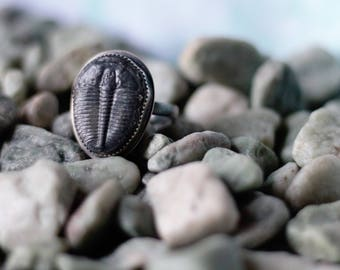 Trilobite Ring! Fossil Ring in Silver, Unisex Ring, Large Ring Size, Artisan Sterling Silver