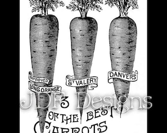 Instant Digital Download, Vintage Victorian Antique Graphic, Carrot Ad Advertisement, Easter Printable Image Spring Garden Seeds, Typography