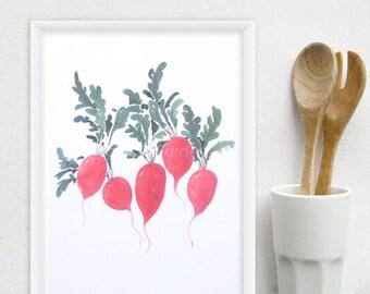 Radish Kitchen Art Print - Watercolor food print, vegetable art - Any ONE 8x10 OR 8x11 Kitchen Decor / Modern Kitchen Art