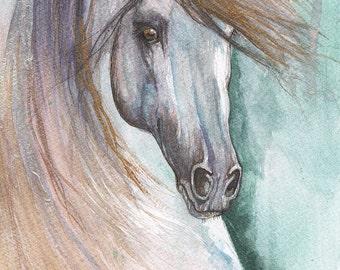 andalusian horse portrait, equine art, equestrian painting, original watercolour art