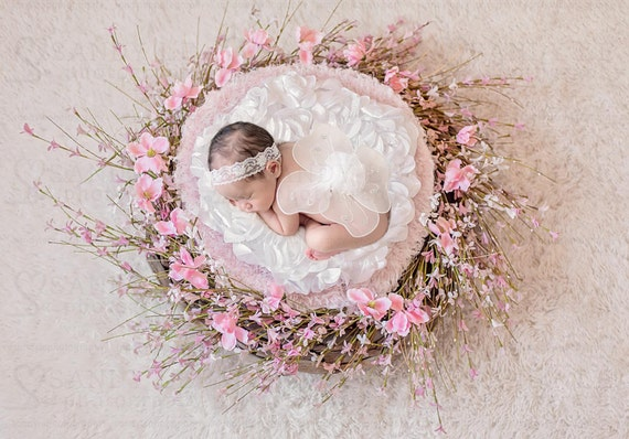 Newborn digital backdrop pink magnolia flower wreath