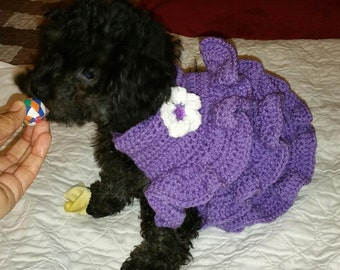 Dog/ Doggy dress - Tutu - Ruffles - 2 to 15 lbs