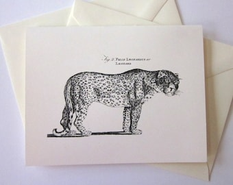 Leopard Note Cards Set of 10 with Matching Envelopes