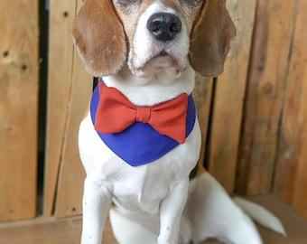 Dog wedding attire. Dog costume. Dog bow tie. Dog Outfit. Dog bandana. Dog collar. Dog Wedding bandana. Dog tuxedo. Royal blue burnt orange