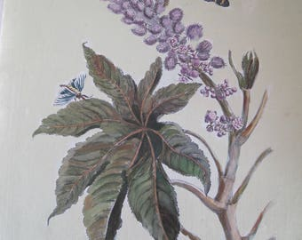 Botanical by Maria Sibylla Merian Hand Colored in Italy on Canvas Ricinus Americanus Major Purple Blues Greens