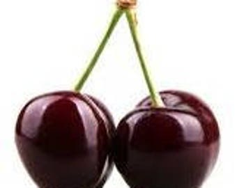 Black Cherry Fragrance Oil - Soap fragrance oil - Scents for soap - Soapmaking supplies - Soap supplies - Multiple sizes available