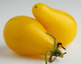 200 seeds from tomato PEAR yellow