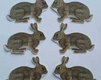 6 x Rabbit stickers. Snail mail hobonichi midori planner journal decorations. Ephemera.