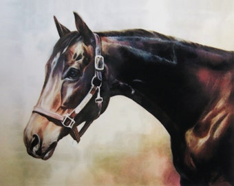 BAY THOROUGHBRED -  horse art print of pastel painting of a retired racehorse equine giclee print fine art horse print