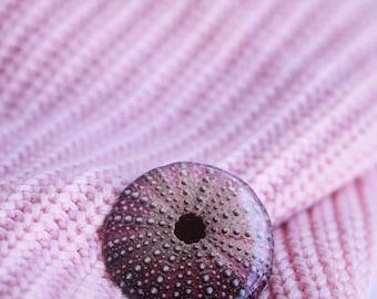 Sea urchin brooch Sea urchin jewelry Sea shell brooch Ocean lover gift Beach jewelry Summer jewelry Sea shell gift idea , Sea lover gift