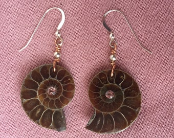 Ammonite Fossil Earrings with Rose crystal gem stone Silver bead,  and sterling silver hooks